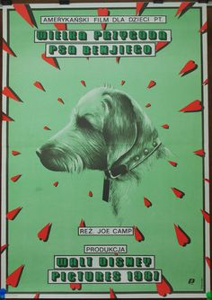 Benji the Hunted. Adventure. Family. USA 1987 by Joe Camp film. Polish poster by Eugeniusz Skorwider 1989. Benji. Baby room. Wall decore