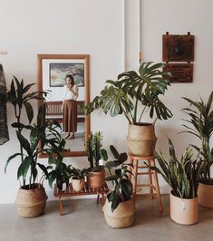 Home Decoration Living Room Room With Plants, House Plants Decor, Home Decor Styles, Cheap Home Decor, Room Decor Bedroom, Living Room Decor, Aesthetic Room Decor, Aesthetic Plants, Boho Room