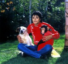 Michael Jackson and his love for animals.