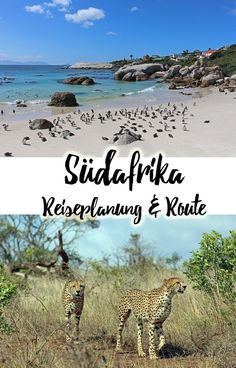 Südafrika - Reiseplanung, Route und travel must haves (South Africa travel route)