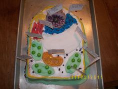 a cake made to look like a plant cell for my daughters school project