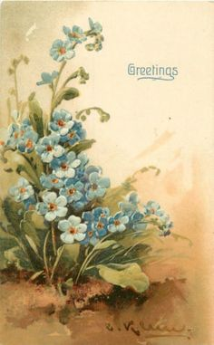 CATHERINE-KLEIN-A-S-BLUE-FLOWERS-GREETINGS-EMBOSSED-P-C