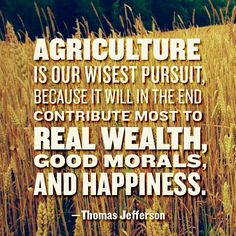 """Agriculture is our wisest pursuit, because it will in the end contribute most to real wealth, good morals, and happiness."""" - Thomas Jefferson << this is why I am in college for agriculture degree Farm Quotes, Country Quotes, Life Quotes, Country Life, Farm Sayings, Cowboy Quotes, Horse Quotes, Beach Quotes, Crush Quotes"""
