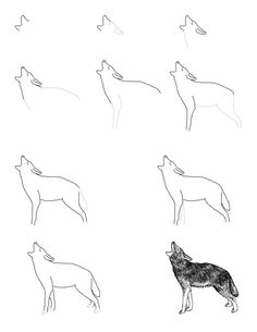 How to draw animals - awesome website!