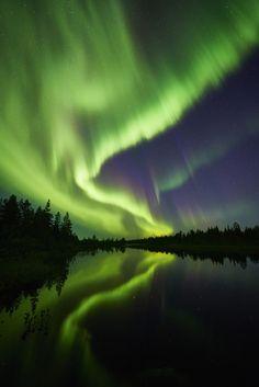 Aurora by Gunar Streu*