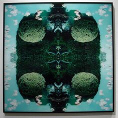 Ryo Ohwada - world of round series Artistic Photography, Landscape Photography, Art Photography, Creative Landscape, Photos 2016, Photography Courses, Gcse Art, Patterns In Nature, New Art