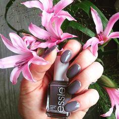 💕🎀 Meine Nägel für diese Woche 💅🏻 lackiert mit Chinchilly von Essie 🎀💕 #nails #Nägel #nailart #nageldiy #naillaquer #nailpolish #nailstagram #nagellack #essie #essielook #essielove #essiepolish #essiechinchilly #chinchilly