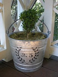 Small shrub planted in a galvanized bucket that has been stenciled with the house number -   http://thegardeningcook.com/galvanized-garden-decor/