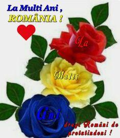 Romania, 1 Decembrie, Flowers, Plants, Plant, Royal Icing Flowers, Flower, Florals, Floral