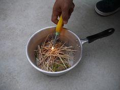 Foliage Plants, Compost, Agriculture, Vegetable Garden, Farmer, Planting Flowers, Garden Design, Home And Garden, Herbs