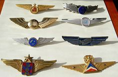 Airline wings