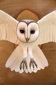 Paper and Wood Barn Owl Sculpture by Zack Mclaughlin. Click through to read about Zack's process and the paper bird kits he recently began selling via his website and Etsy shop.