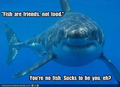 """""""Fish  are  friends,  not  food."""""""