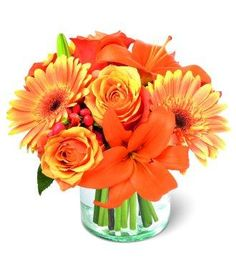 Orange Flower Bouquet features orange bi-color roses, orange Gerbera daisies and orange Asiatic lilies with a touch of red hypericum berries arranged in a flared glass vase. Its colors mindful of a beautiful sunset. Simply Bewitching!