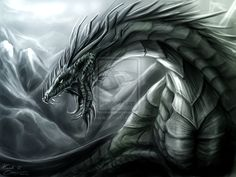 Dragon Images, Image Search | Ask.com