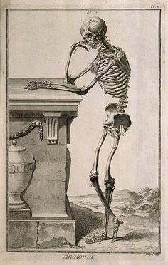 Illustration of a skeleton leaning against a tomb