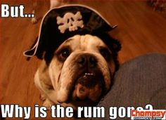pug why is the rum gone