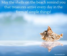 Beach Saying: May the shells on the beach remind you that treasures arrive every day in the form of simple things!