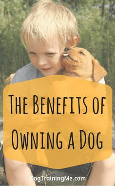 The benefits of owning a dog are varied. From health benefits like a healthy heart and more exercise, to reduced stress and finding love. They are good for the kids too. Click through for more now.