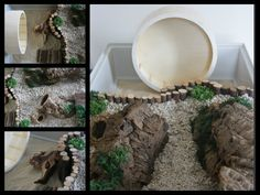 cool natural hamster cage | Hamster Cages.
