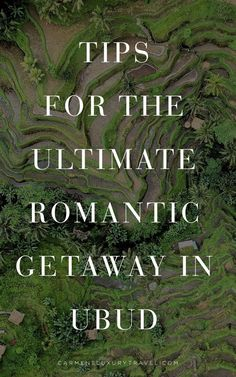 Where to Have a Romantic Stay in Bali | Romantic Getaway in Ubud Bali #exploreBali Luxury Escapes, Luxury Resorts, Amazing Hotels, Best Hotels, Bali Resort, Romantic Getaway, Ubud, Luxury Travel, Traveling By Yourself