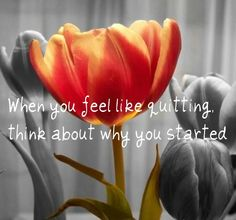 When you feel like quitting think about why you started.