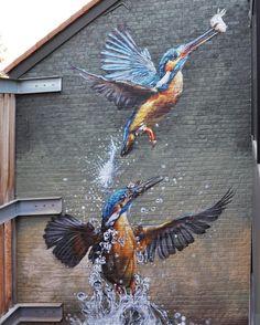 """Birds"" - Hyper-realistic Mural by Street Artist Bart Smeets aka Smates Urban Street Art, 3d Street Art, Street Art Graffiti, Street Artists, Murals Street Art, Graffiti Murals, Graffiti Artists, Graffiti Lettering, Amazing Street Art"