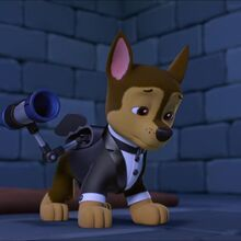 Mission PAW: Quest for the Crown/Gallery Los Paw Patrol, Rubble Paw Patrol, Paw Patrol Pups, Personajes Paw Patrol, Cloverfield 2, Boy Car Room, Imprimibles Paw Patrol, Paw Patrol Characters, Sweet Boyfriend