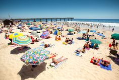 We list all the coolest things to do on the cheap in Port Elizabeth, the friendliest city in South Africa. Beach Honeymoon Destinations, Travel Destinations, Port Elizabeth South Africa, Holland, Playa Beach, Cultural Experience, Going On A Trip, Africa Travel, Countries Of The World