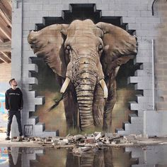 Elephant street art in Madrid, Spain