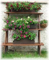 Výsledek obrázku pro kvetiny na terase Plants, Plant, Planets