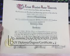 Birth Certificate Letter Request Quality Certification Letter