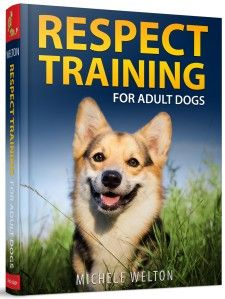 Respect Training For Adult Dogs By Michele Welton Dog Training