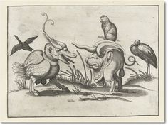 """Arent van Bolten 'Cat Riding a Monster'.  """"His artistic output ranged from grotesque figures and monsters, to figural scenes from the Bible and mythology. Among them is this rather strange piece depicting two monsters doing battle, one ridden by a nonplussed cat"""". from: http://publicdomainreview.org/shop/posters-and-prints/arent-van-boltens-cat-riding-a-monster/"""