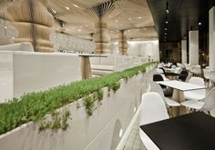 Elegant and natural Graffiti Cafe interior design