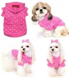 Dog clothes aren't just for fu-fu dogs anymore. The dog clothing industry has taken off at the demand of pet owners. But buying dog accessories and apparel can get expensive. That's why making your pet's clothes is an easy and cheap alternative. Small Dog Clothes, Puppy Clothes, Dog Clothes Patterns, Pet Fashion, Fashion News, Dog Items, Dog Pattern, Dog Sweaters, Dog Dresses