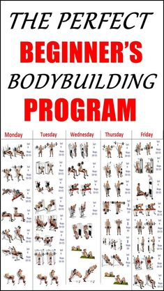 The Perfect Beginner S Bodybuilding Program Beginner Workout For Men, Gym Workouts For Men, Workout Plan For Men, Workout Routines For Beginners, Weight Training Workouts, Gym Workout Chart, Full Body Workout Routine, Gym Workout Tips, Fitness Workouts