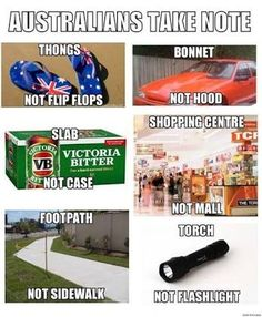 Come to Australia with me Stupid Memes, Dankest Memes, Funny Memes, Hilarious, Jokes, Funny Logic, Ironic Memes, Australia Funny, Melbourne Australia