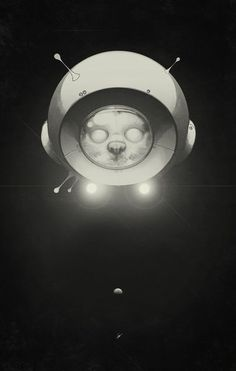 'Space Kitty' by Lukas Brezak on artflakes.com as poster or art print $16.63