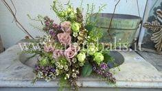 Flower Design - Anaphalis