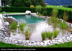 Medencés kerti tó