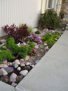 M's garden update June 4 2013 much more color. 2019 M's garden update June 4 2013 much more color. The post M's garden update June 4 2013 much more color. 2019 appeared first on Landscape Diy. Home Landscaping, Landscaping With Rocks, Front Yard Landscaping, River Rock Landscaping, Xeriscaping, Lawn And Garden, Gravel Garden, Garden Projects, Garden Inspiration