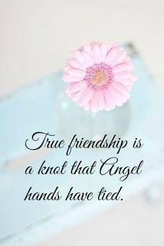 True Friendship Is A Knot That Angel Hands Have Tied friend friendship quotes friend quotes quotes for friends quotes on friendship Birthday Message For Friend Friendship, Happy Birthday Best Friend, Cute Happy Birthday, Sister Birthday Quotes, Sister Quotes, Birthday Messages, Birthday Greetings, Bff Quotes, Family Quotes