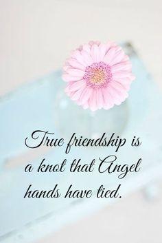 True friendship........ღ ღ ღ