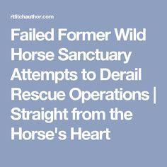 Failed Former Wild Horse Sanctuary Attempts to Derail Rescue Operations | Straight from the Horse's Heart