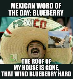 Mexican Word of the Day: Blueberry