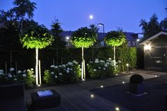 Wat licht al niet kan doen in je tuin Beautiful Gardens, Garden Landscaping, Little Gardens, Back Gardens, Outdoor Gardens, Backyard Lighting, Outdoor Lighting, Terrace Garden, Garden Plants