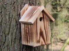 Meisenkasten, Nistkasten, Bruthilfe, Vogelhaus Bird, Outdoor Decor, Home Decor, Kinds Of Birds, Enemies, First Aid, Timber Wood, Decoration Home, Room Decor