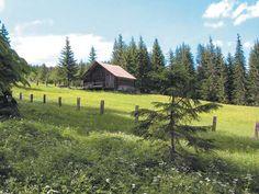 GAM-OOE Gosau Hütte/Hut 10 Pers., Gosau