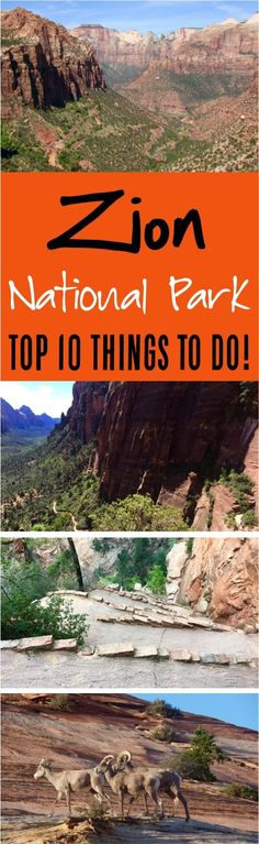 Zion National Park Itinerary!  Tips for the Narrows, Angel's Landing, Hiking, visiting with kids and more!